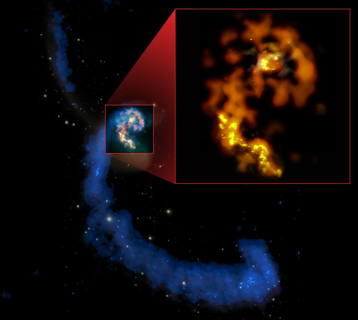 magen compuesta en múltiples longitudes de onda, de las galaxias en interacción NGC 4038/4039, las Antenas, donde se aprecia sus colas en longitudes de onda de radio (azules), las formaciones de estrellas pasadas y recientes en luz visible (blancos y rosados), y una selección de regiones de estrellas actualmente en formación en longitudes milimétricas y submilimétricas (naranjos y amarillos). En detalle: primeras observaciones milimétricas y submilimétricas de ALMA en las bandas 3 (naranjo), 6 (ámbar) y 7 (amarillo), con un nivel de detalle que sobrepasa todas las otras imágenes de estas longitudes de onda. Créditos: (NRAO/AUI/NSF); ALMA (ESO/NAOJ/NRAO); HST (NASA, ESA y B. Whitmore [STScI]); J. Hibbard (NRAO/AUI/NSF); y NOAO/AURA/NSF.