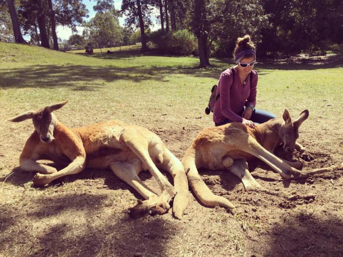 Josefina couldn't miss the kangaroos during her trip to Australia. Credit: J. Ruiz Tagle - Likan English Network SPA