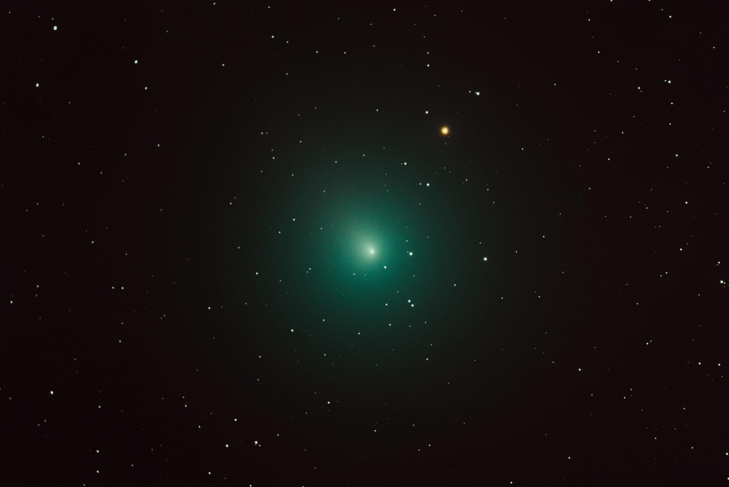 <p>Imagen óptica del cometa 46P / Wirtanen tomada desde Chiefland, Florida, el 4 de diciembre de 2018. Detalles de la cámara: cámara Canon 6D, telescopio astrógrafo MN190mm. Crédito: Derek Demeter, Emil Buehler Planetarium</p>