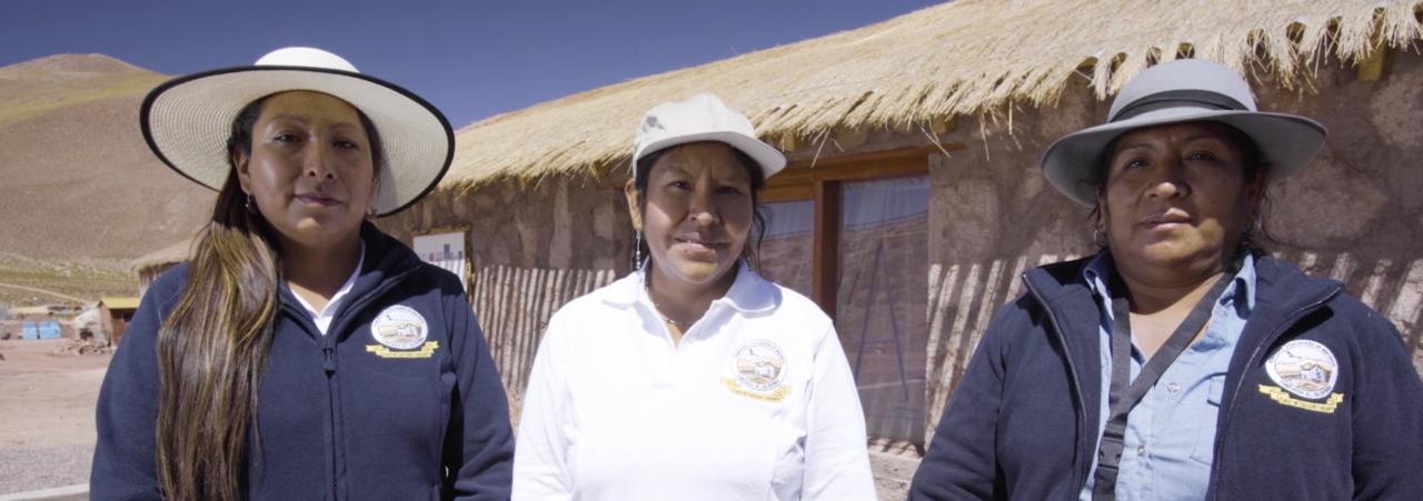 Nueva serie muestra comunidades vecinas respaldadas por ALMA