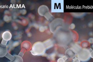 Moléculas Prebióticas