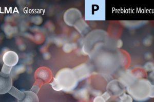 Prebiotic Molecules
